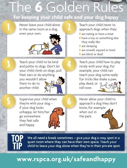 Keeping Your Child Safe And Your Dog Happy